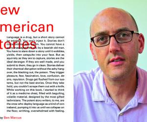 New American Stories ben marcus